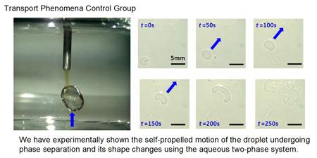 Transport Phenomena Control Group: